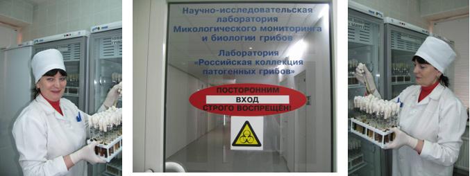 gribok-onihomikoz-lechenie